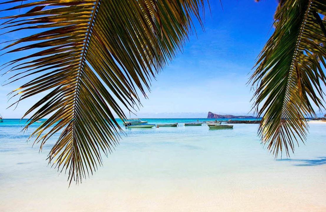 Paradiesisch: Mauritius ist vor allem ...ände und das Blau des Meeres bekannt.   | Foto: S. Mayer (2), Bamba/Mauritius Tourism (2)/(dpa-tmn)