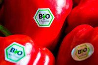 Der Bio-Zwang wäre eine peinliche Niederlage der Freiburger Grünen geworden