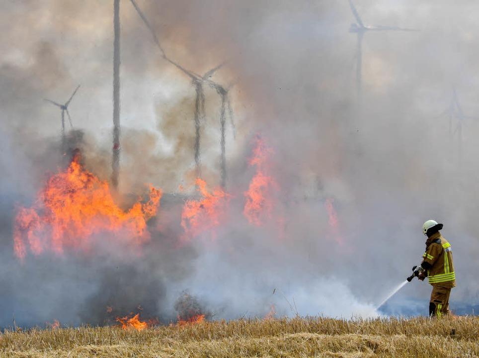 Ein Feuerwehrmann löscht ein brennendes Getreidefeld.  | Foto: dpa