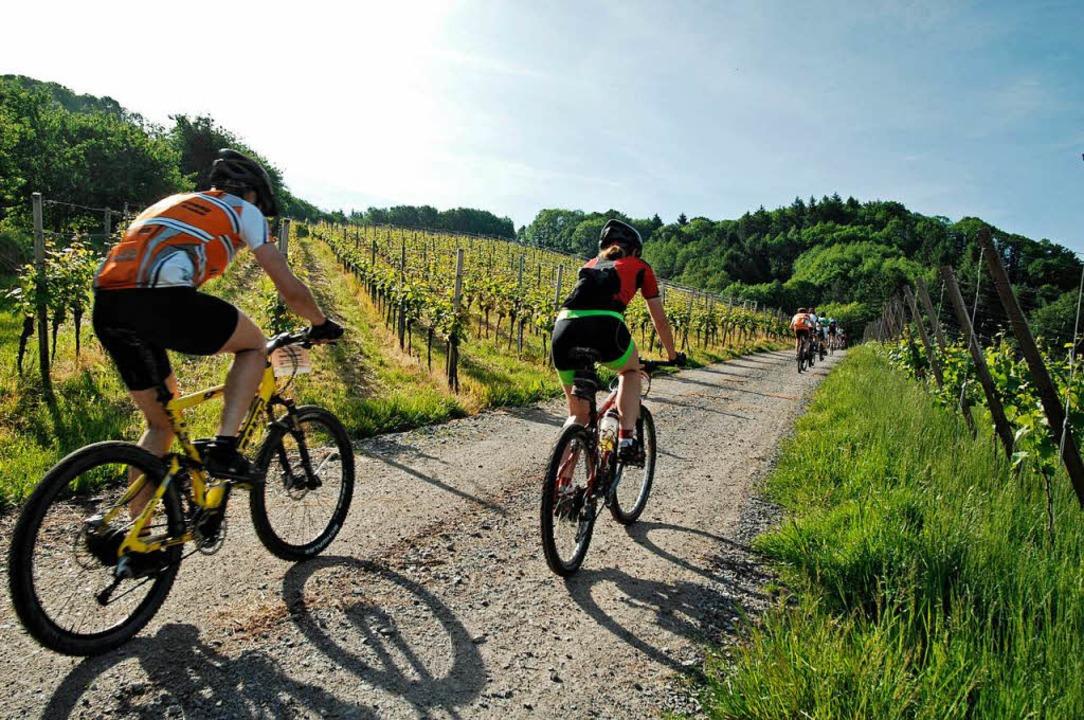 Mountainbiking im Schwarzwald ist bei Touristen wie Einheimischen beliebt.  | Foto: schwarzwald-photo