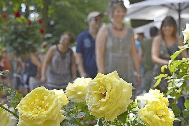 12 000 Gartenfreunde pilgern zur Diga