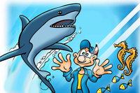 Lass dich im Sea Life Konstanz faszinieren und spare 50 Prozent!