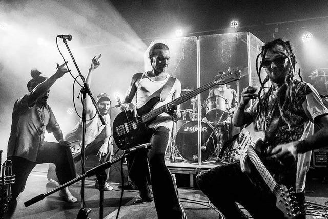 Die Freiburger Band Malaka Hostel nimmt eine neues Album auf – und will dafür Unterstützung