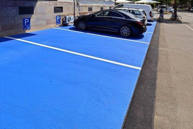 Schlumpfblaue Parkplätze in der Freiburger Wiehre sollen weg, fordert das Amt