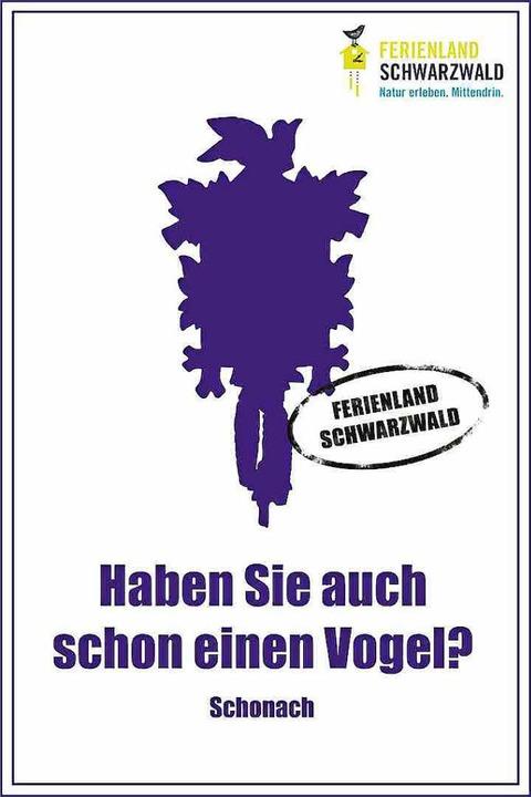 Unter anderem so wirbt das Ferienland im Schwarzwald  | Foto: Ferienland