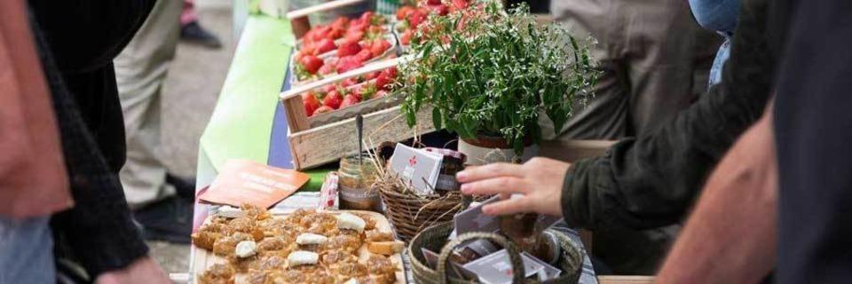 Mit dieser App kommst Du an regionale und saisonale Lebensmittel