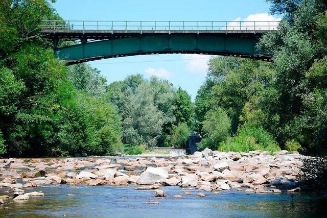 Zu wenig Regen: Für die Gewässer wird es im Landkreis Lörrach langsam kritisch