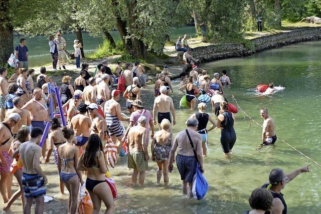 Hundert schwimmen im Rhein und sind begeistert