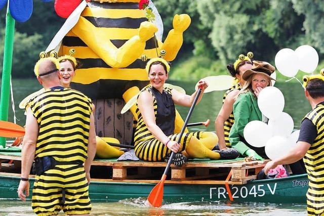 Bunte Boote bei der Neuenburger Rhein-Regatta 2018