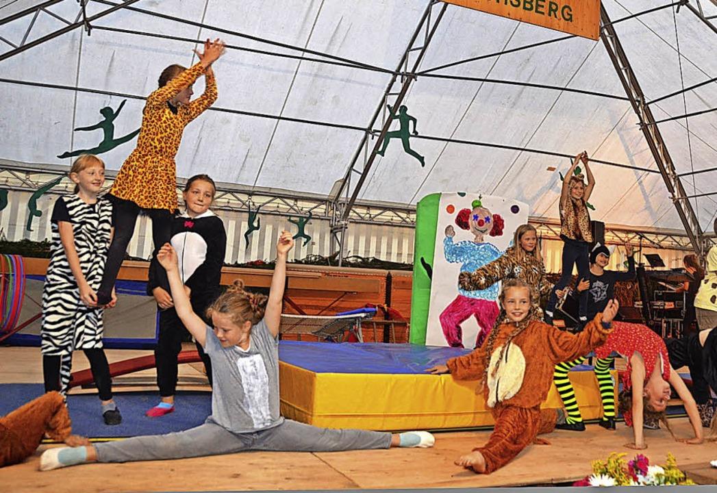 Akrobatik in der Manege zeigten die Jüngsten des Vereins.  | Foto: Christiane Sahli