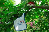 In Biederbach bekommt jedes Baby zur Geburt einen Baum