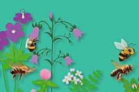 """Zu gewinnen: Führung durch die Ausstellung """"Mensch Biene!"""" und Insektennistkasten-Workshop im Freiburger Museum Natur und Mensch"""