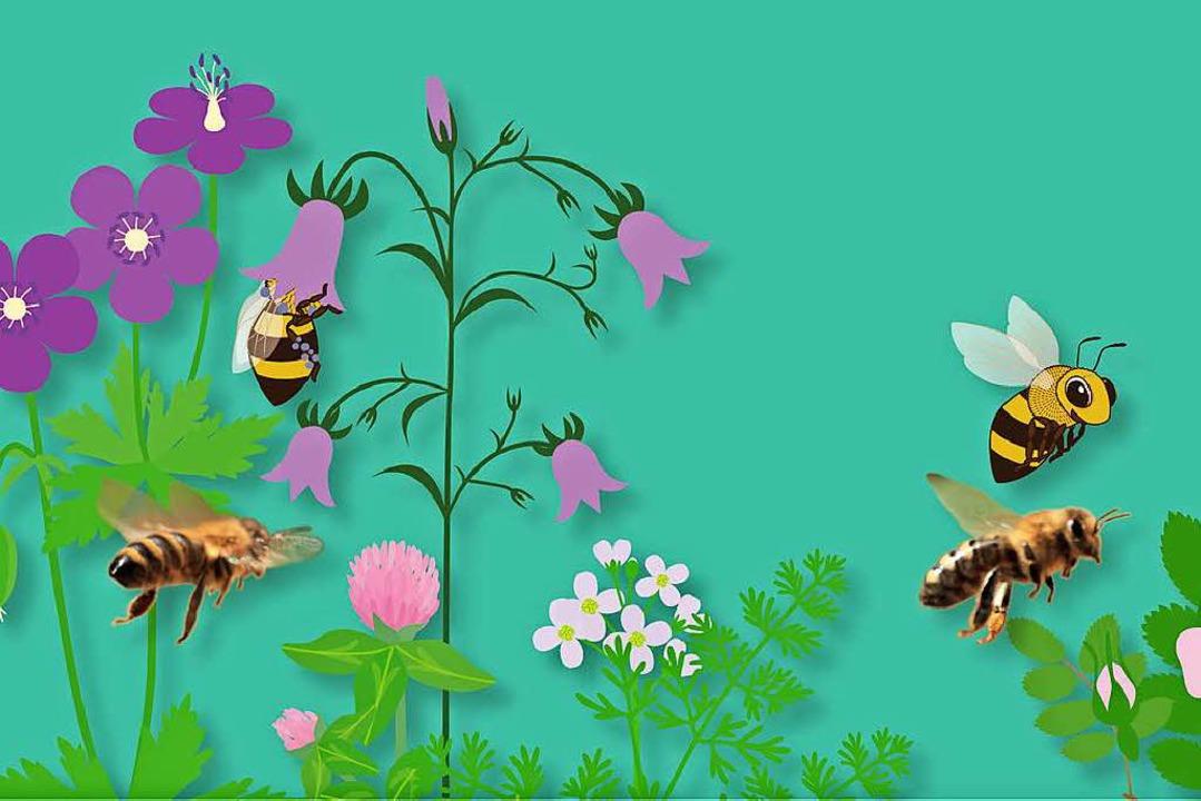 Die Biene ist ein faszinierendes Insekt.  | Foto: Marco Sepulveda