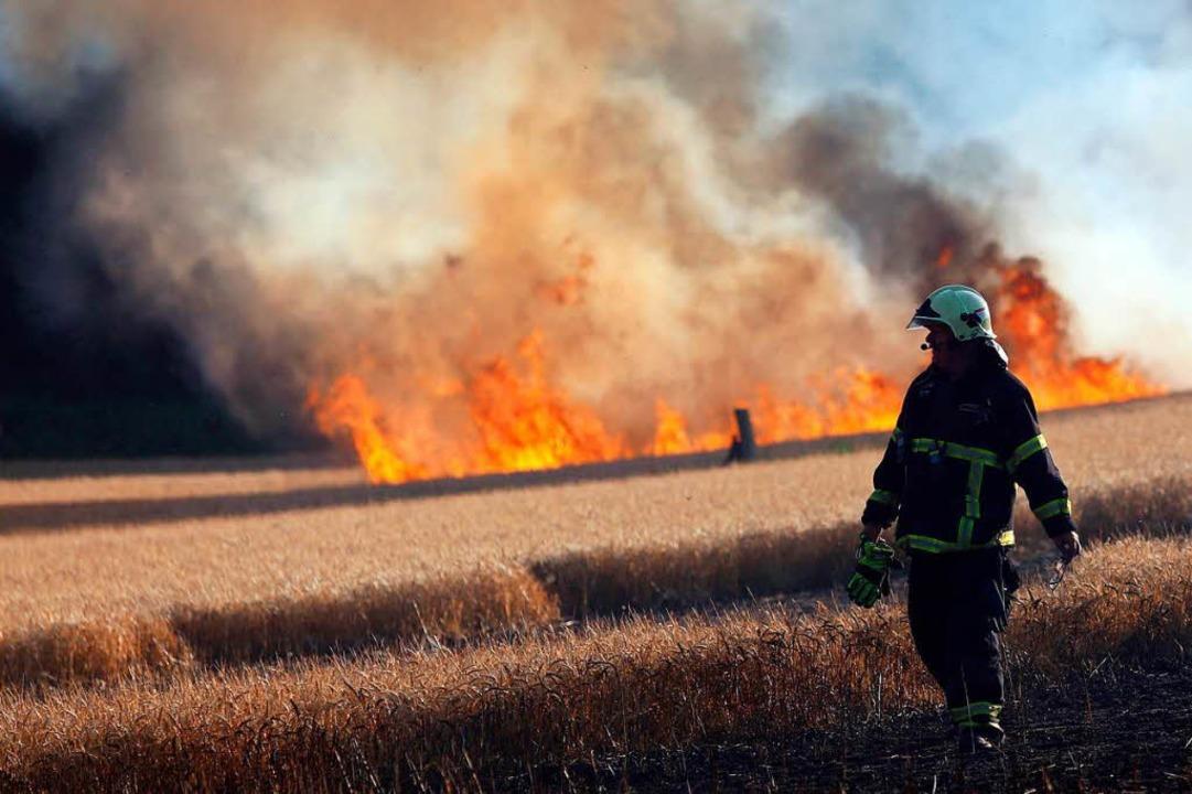 Feuerwehrleute löschen Anfang Juli nah...in Getreidefeld das in Flammen steht