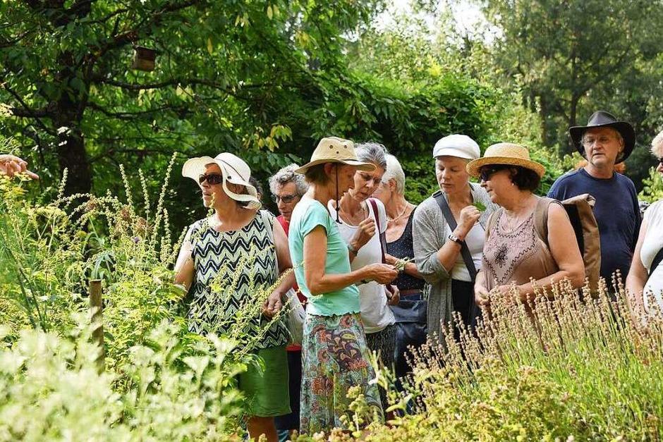 Sinnliche Eindrücke gab es bei der BZ-Ferienaktion im Heilpflanzengarten Achillea in St. Georgen (Foto: Rita Eggstein)
