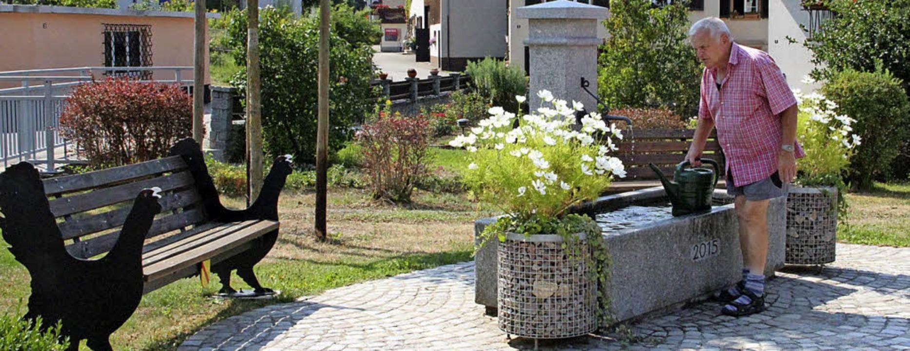 Dorfbrunnen Marzell  Ein wichtiger Was...muck entlang der Kandern zu versorgen.  | Foto: Rolf-Dietger Kanmacher