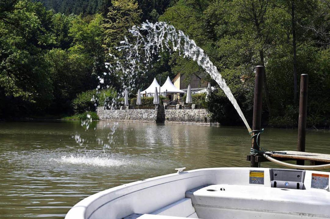 Mit Pumpen wird Wasser aus dem See geh...estliche Fischbestand gerettet werden.  | Foto: Thomas Kunz