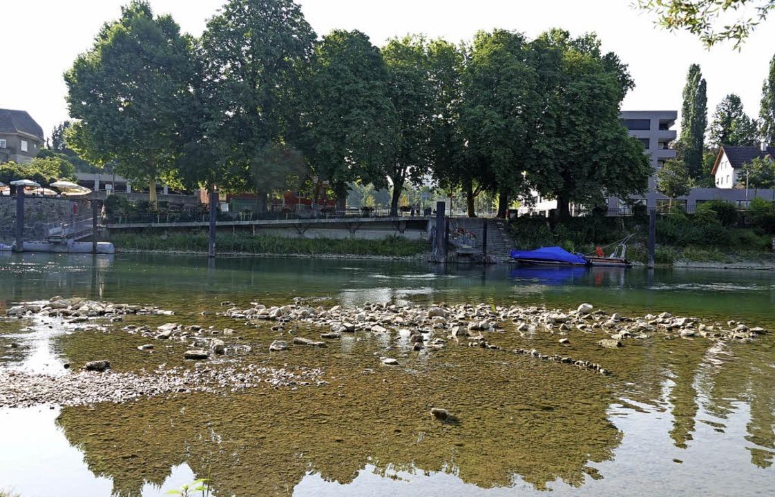 Zu wenig Wasser: In Rheinfelden wird eine Felsabtragung ins Auge gefasst.   | Foto: Valentin Zumsteg