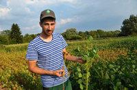 Wie südbadische Bauern mit der anhaltenden Dürre kämpfen