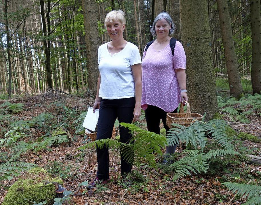 Erfahrene Pilzcoaches: Susanne Butz un...nz kleine Pilze gibt es zu entdecken.   | Foto: Felix Held