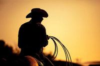 Pferd entführt – Polizei sucht Dieb mit Cowboyhut