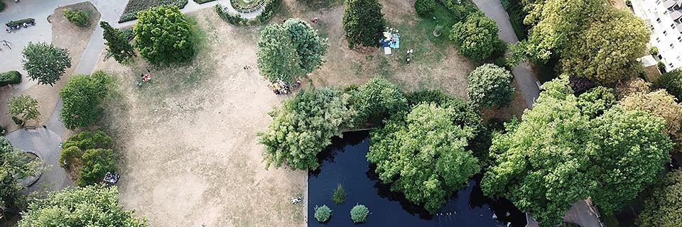 Drohnenbilder zeigen Freiburger Wüste statt Green City