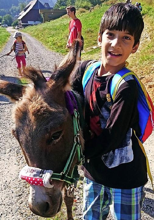 Höhepunkt der Ferienprogramms war die Eselwanderung.   | Foto: Privat
