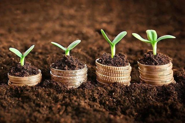 Der Markt für grüne Investments wächst in Deutschland nur langsam