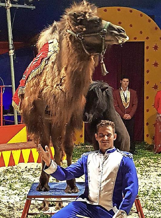 Zu bestaunen gibt es in den Zirkusvors...gen auch die Künste von Kamel Aladin.   | Foto: PrIVAT