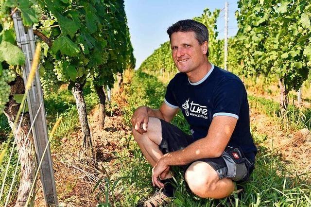 Warum dieser Landwirt darüber nachdenkt, auf Bio umzustellen – es aber nicht tut