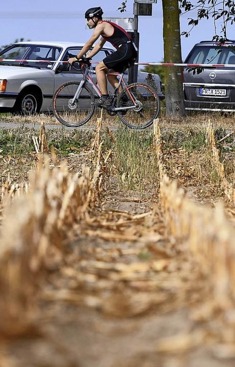 Die Leidenden:  Natur und Triathlet müssen  viel aushalten.  | Foto: Patrick Seeger
