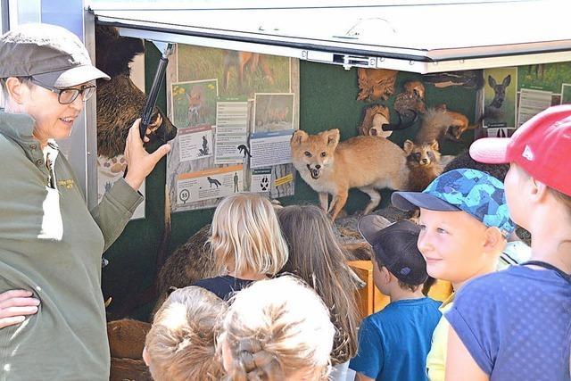 Das Jagdmobil bietet Wissen zur Natur