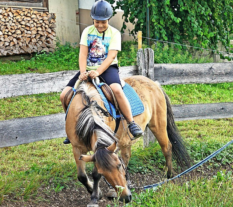 Als der Regen vorüber war, durften die... die Pferde und eine Runde longieren.   | Foto: Verena Wehrle