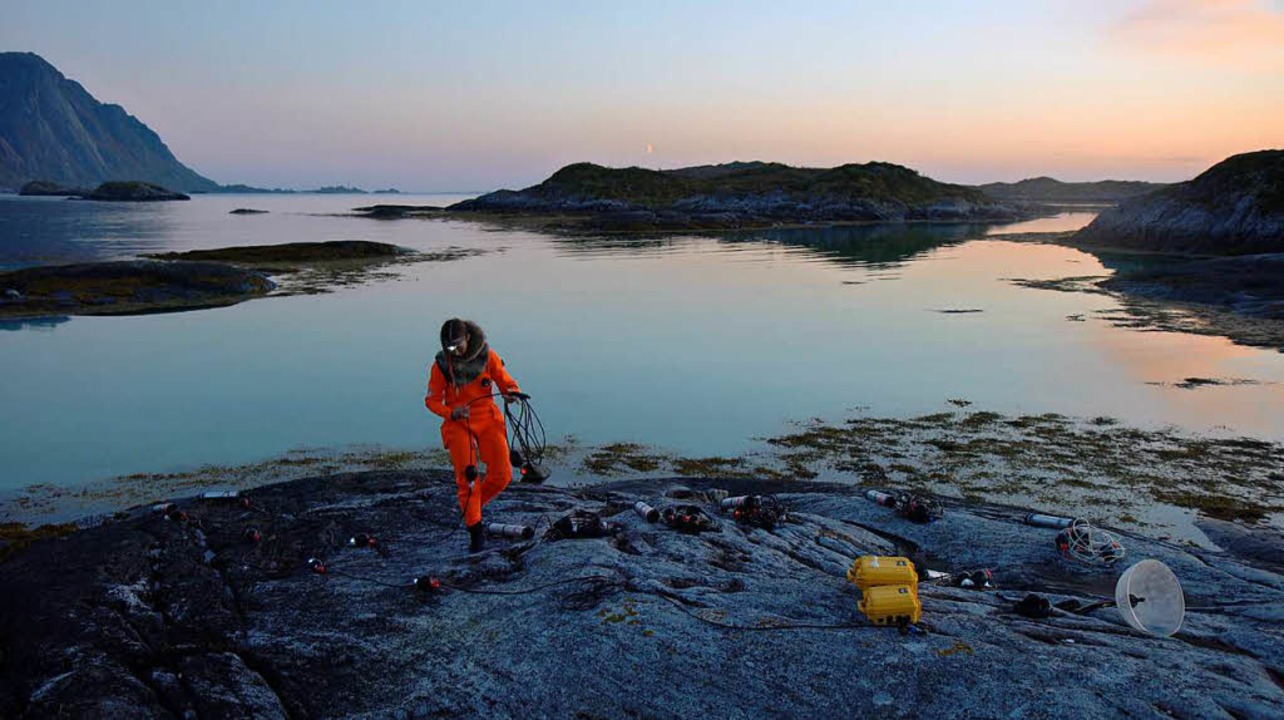 """Eine Szene aus Ursula Biemanns Videoinstallation """"Acoustic Ocean""""    Foto: Ursula Biemann"""