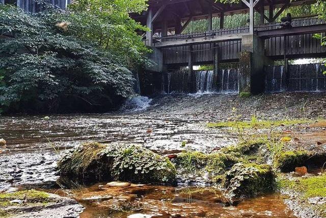 Fotos: Die Schutter von der Quelle bis zur Mündung