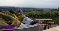 Wein - Musik - Genuss in Ballrechten-Dottingen