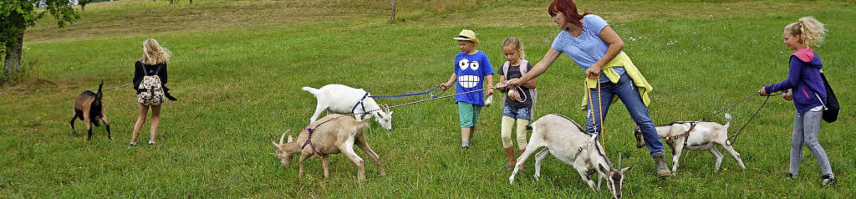 Die Tierwanderungen mit Ziegen oder Es...ramm der Gemeinde Ühlingen-Birkendorf.  | Foto: Werner Steinhart