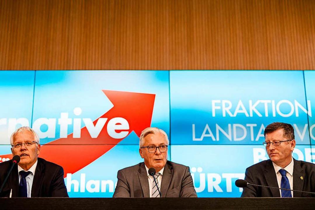 Emil Sänze (v. links n. rechts), AfD-A...-Abgeordneten, bei der Pressekonferenz  | Foto: dpa