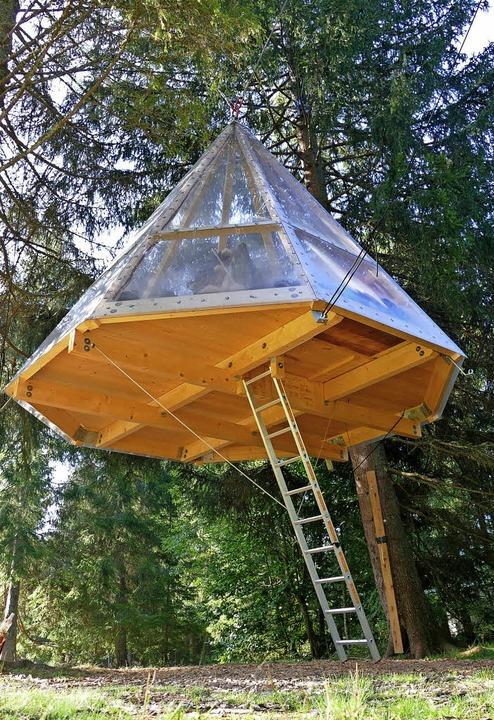 Baumeln in den Bäumen: das neue Übernachtungsangebot im Naturcamp Schluchsee  | Foto: Tanja Bury