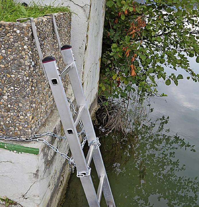Anreize zum Rheinschwimmen sind nicht ...alb diese Leiter entfernt werden muss.  | Foto: Sarah Trinler