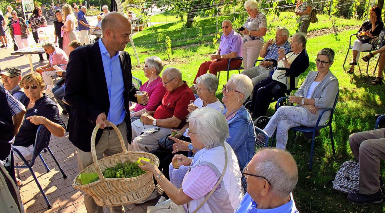 Bürgermeister Carsten Vogelpohl vertei...aubenkur Gutedeltrauben zum Probieren.  | Foto: Jutta Schütz