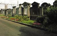 Zwei Basler Friedhöfe (neu) entdecken