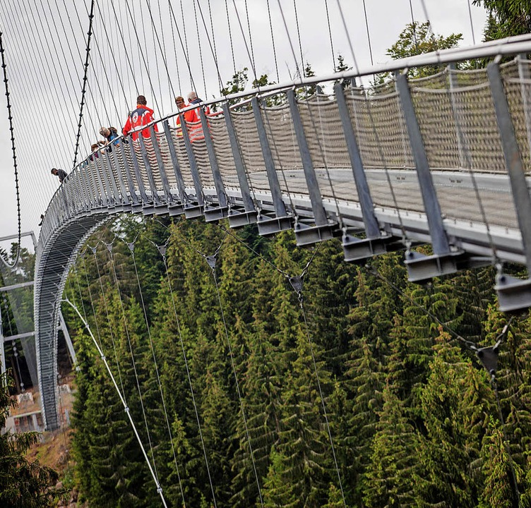 Die Hängebrücke in Bad Wildbad ist am 24. Oktober das Ziel.   | Foto: Dpa