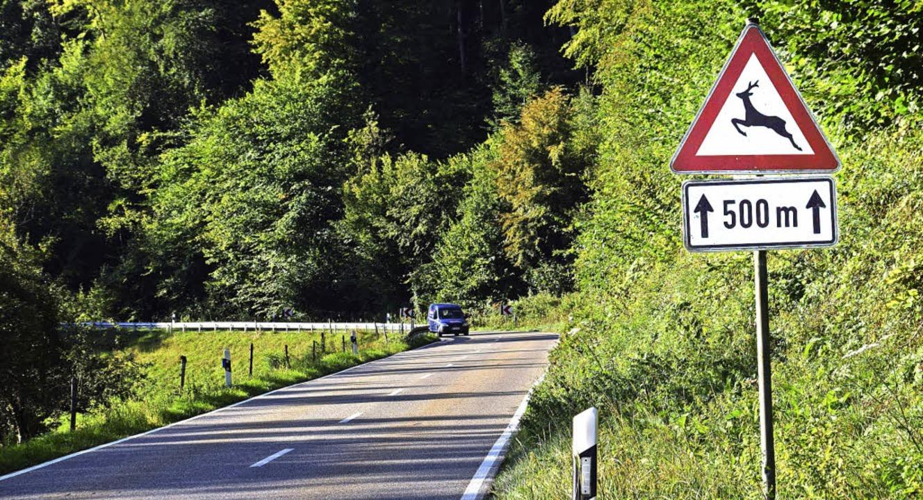 Die L 139 von Maulburg nach Adelhausen...deshalb eine Woche lang voll gesperrt.    Foto: Stefan Ammann