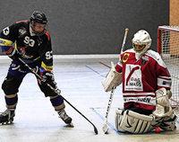 HC Merdingen dicht vor den Playoffs