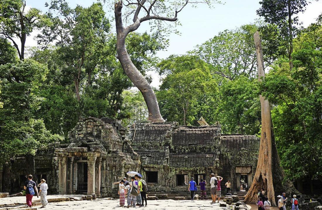 OB-Kandidatin Monika Stein  war zur gl...Tempelstadt Angkor Thom in Kambodscha.  | Foto: Fabian Vögtle