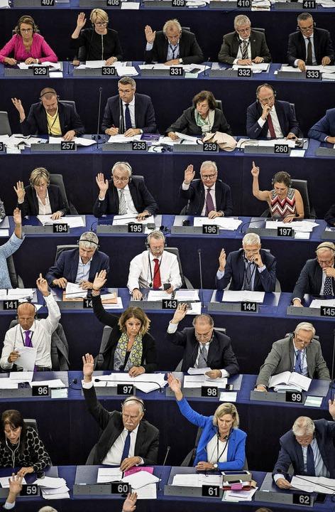 Abstimmung im Straßburger Europaparlament     Foto: dpa