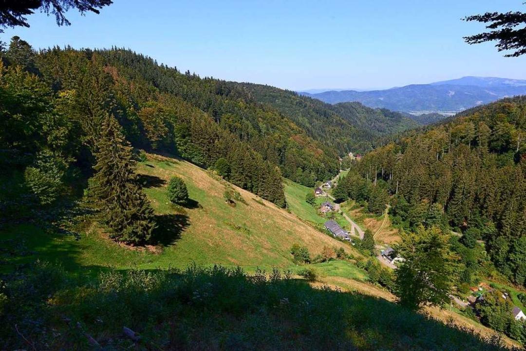 Blick ins Kappler Tal: Rechts unten si...Fläche ist für Windanlagen vorgesehen.  | Foto: Ingo Schneider