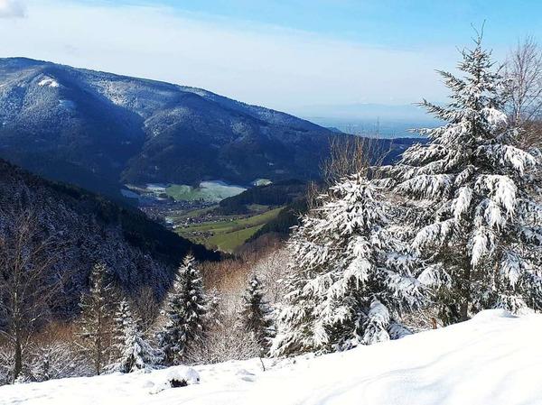 Weitblick (Simonswald)