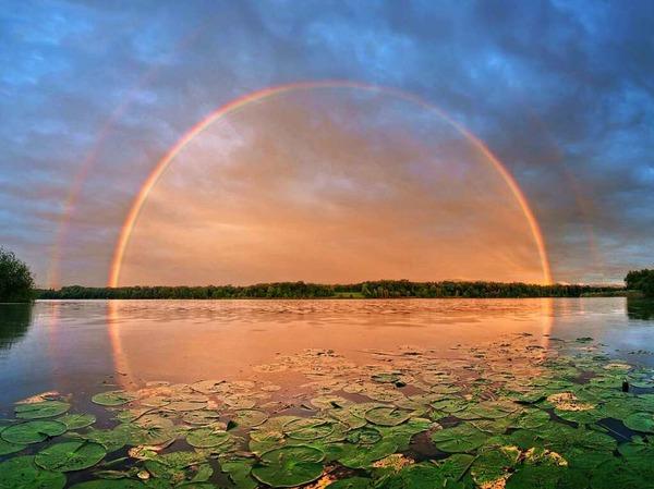 Regenbogentraum (Opfinger See)